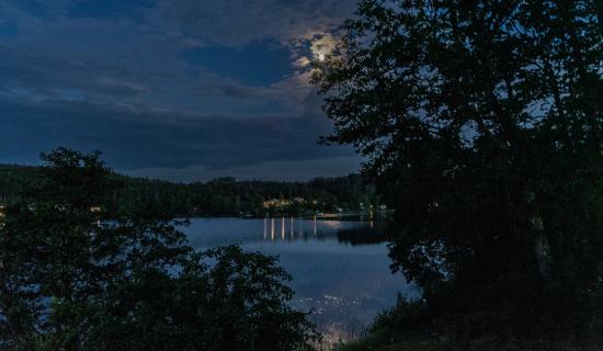 evika-panorama-11