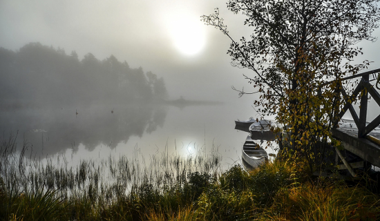 foggy-lake_sm