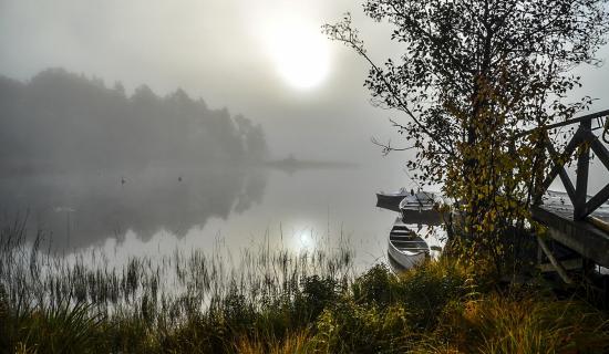 foggy-lake